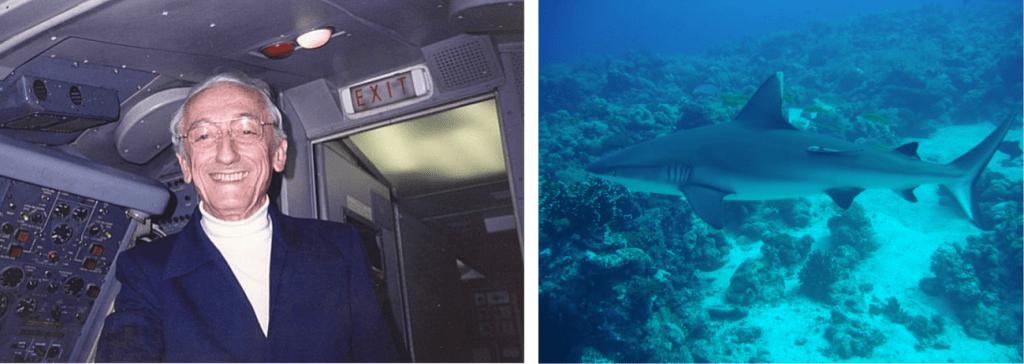 """Il Comandante Jacques Cousteau - Dal cortometraggio """"Feeding"""""""